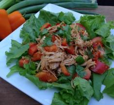 Asian Spiced Chicken Salad